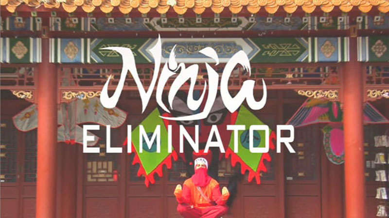 Ninja Eliminator 1 copy